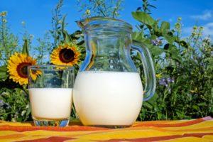 fitness protein milk
